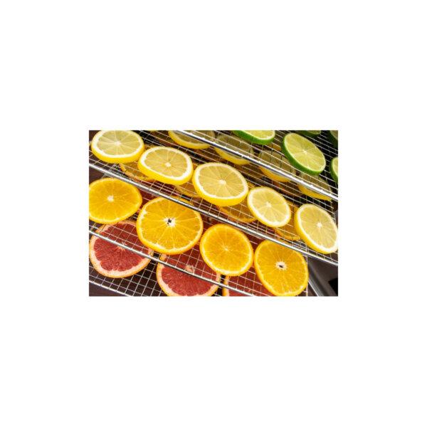 wartmann wm-2006 dh Suszone owoce